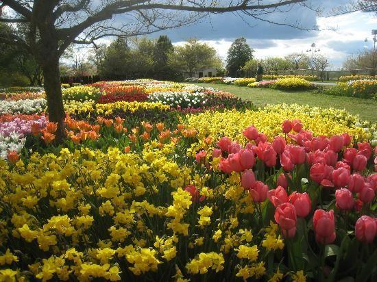 2373292c6431def01239b2d7da3226d2 - How Much Is A Longwood Gardens Membership