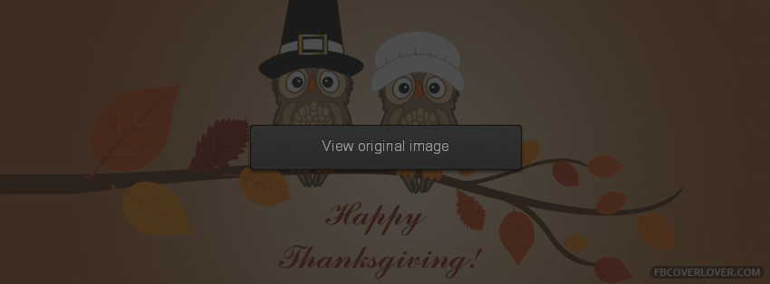 Thanksgiving Covers for Facebook