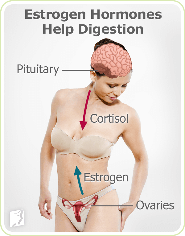 28+ Digestive Problems Symptom Information