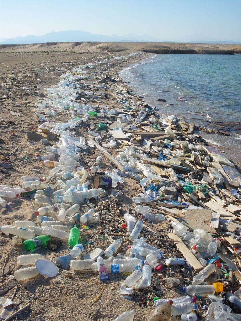 Plage Polluée De Bouteilles En Plastique Sur Les Rives De La