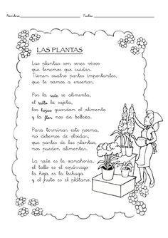 Poema Por El Dia Del Campesino Para Niños De Inicial Secuencia Del Crecimiento De Una Planta Para Nivel Inicial