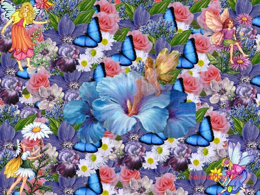 fairies and butterflies background butterfly fairies photo