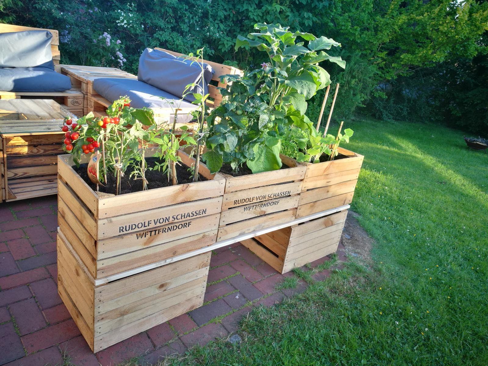 Photo of Hochbeet aus Obstkisten & Weinkisten selber bauen – DIY, Garten – ZENIDEEN