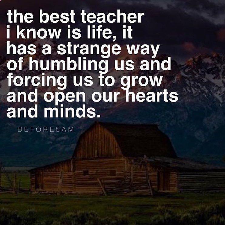 the best teacher i ve ever had