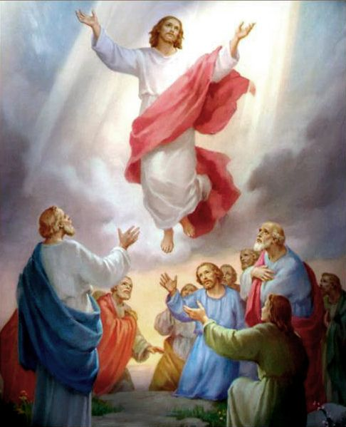 Jesus Ascension to Heaven 24 | Heavens, Religious pictures ...