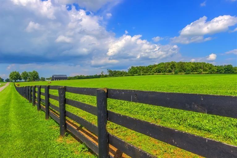 3949 Lemons Mill Pike, Lexington, KY 40511 - Home For Sale and Real Estate Listing - realtor.com®