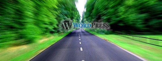 WordPress va lento ¿qué hago?