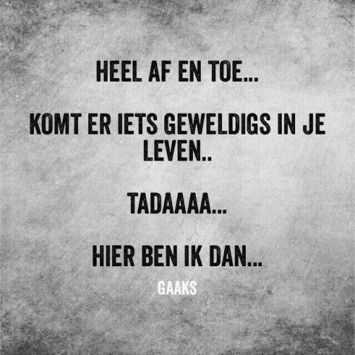 Humor Humor Nederlands Humor Funny Quotes Proverbs