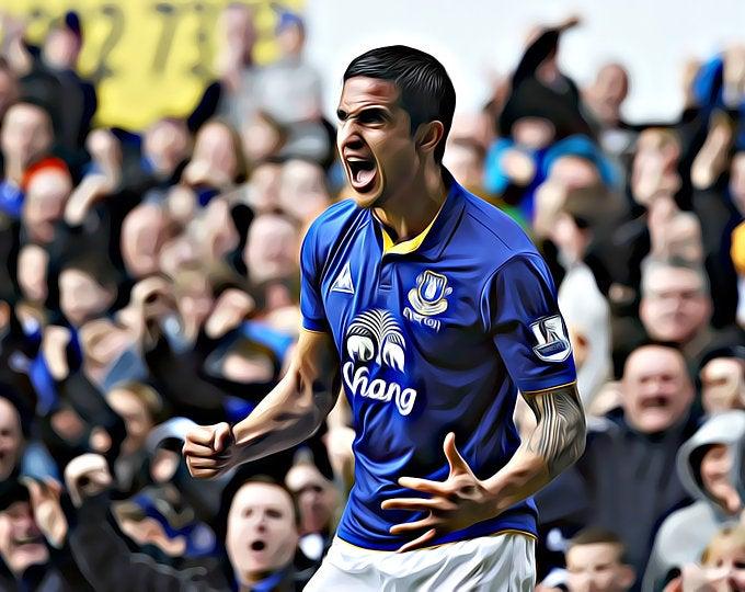 Pin On Everton Fc Prints