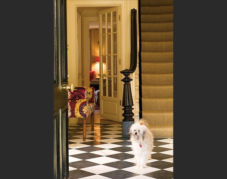 Entry Foyer Runner : Sisal staircase runner and staircases