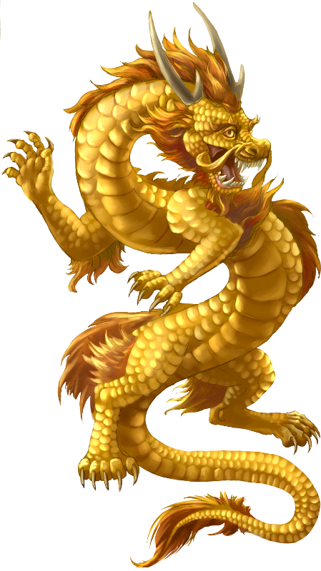 Chinese-Dragon | Enter the mythical in 2018 | Pinterest ...