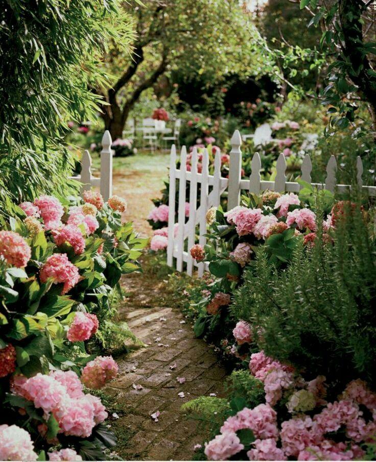 Beautiful But Definitely Not A Bathroom Lol Green Thumb Pinterest Garden Flowers And Gardens