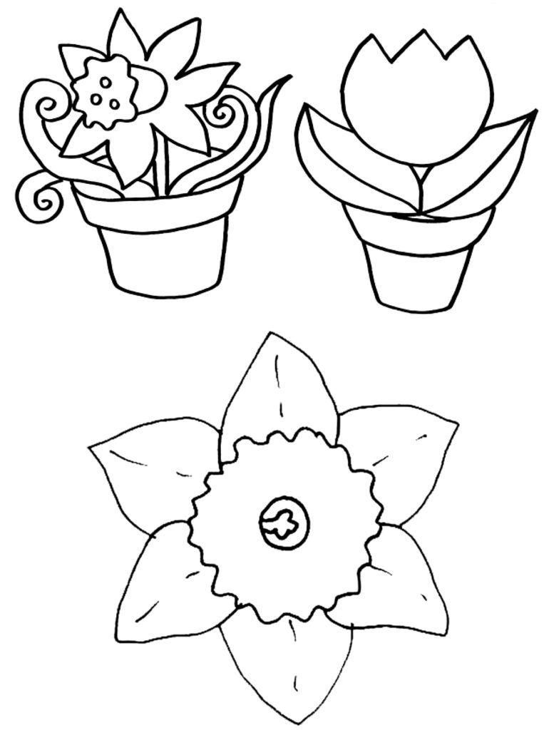 Ausmalbilder Frühling  myToys-Blog  Malvorlagen blumen