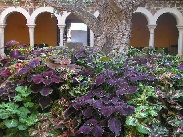cretonas las fotografias son del patio de la casa principal del jardin ...