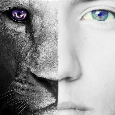 Half Lion And Half Human Mitad Leon Y Mitad Humano Lion Humanidad