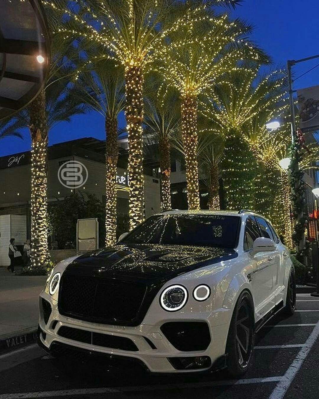 Cars Bentley Suv Luxury Cars: 15 Bentley Suv Fotos