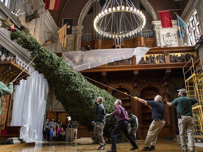 Biltmore Estate Christmas tree raising 2014 | BILTMORE CHRISTMAS ...