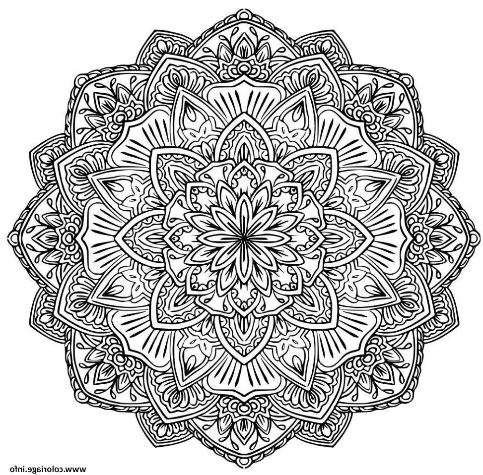 13 Inspirant De Dessin A Colorier Mandala Images Mandala Kleurplaten Kleurboek Kleurplaten