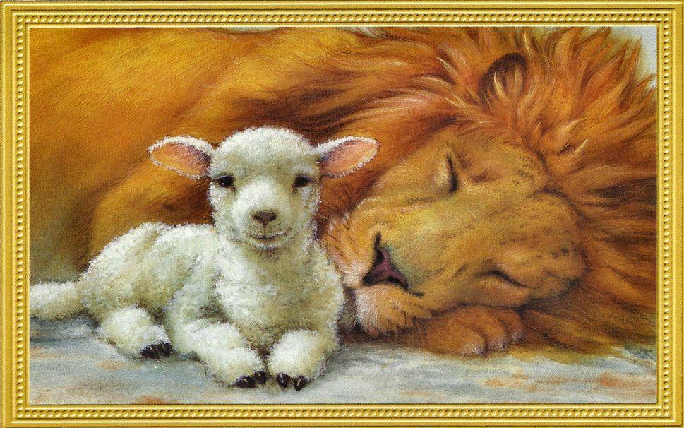 león y cordero wallpaper - ForWallpaper.com   Arte   Pinterest ...