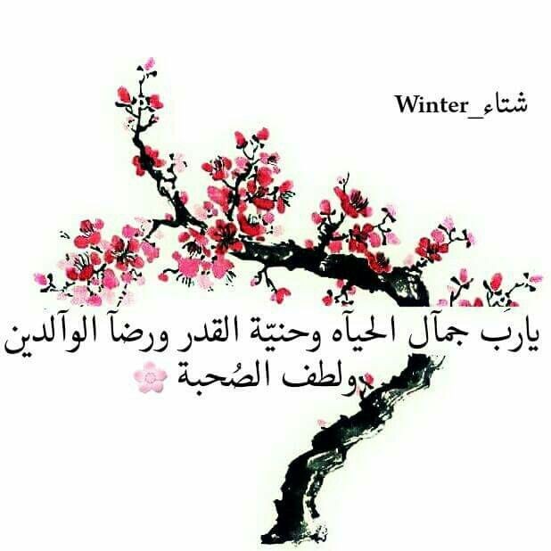 يااااااللله Quran Quotes Beautiful Quotes Photo Quotes