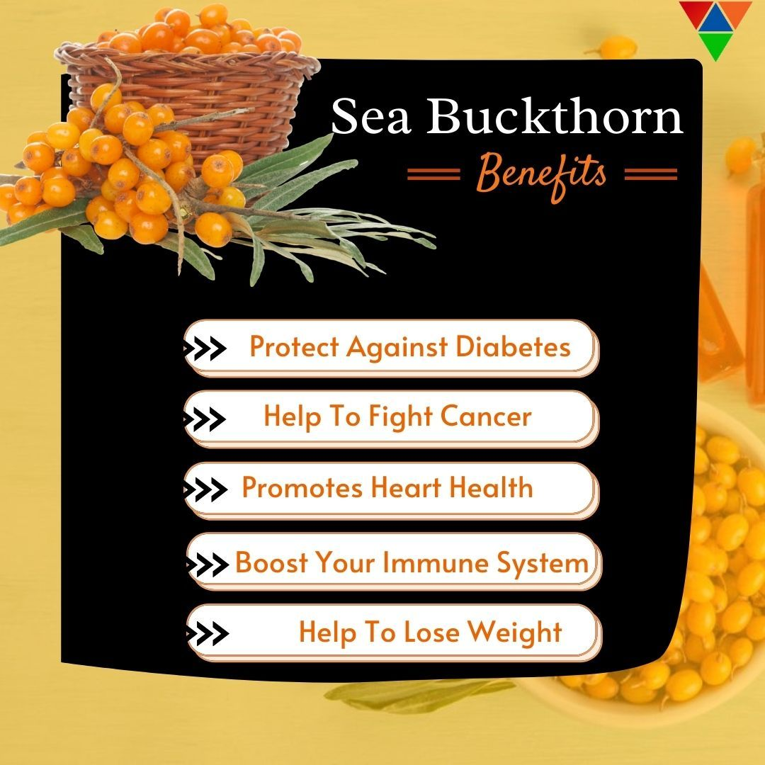 Add this healthy Sea Buckthorn in your daily diet to spot positive changes in yourself. For more details about a healthy diet and  healthy lifestyle visit our website. #seabuckthorn #health #seabuckthornoil #omega #healthyfood #seabuckthornberry #natural #directselling  #healthcare #mlm #healthylifestyle #seabuckthornfarm #healthyhair #seabuckthornjuice #FOODOLOGY #foodologyinc