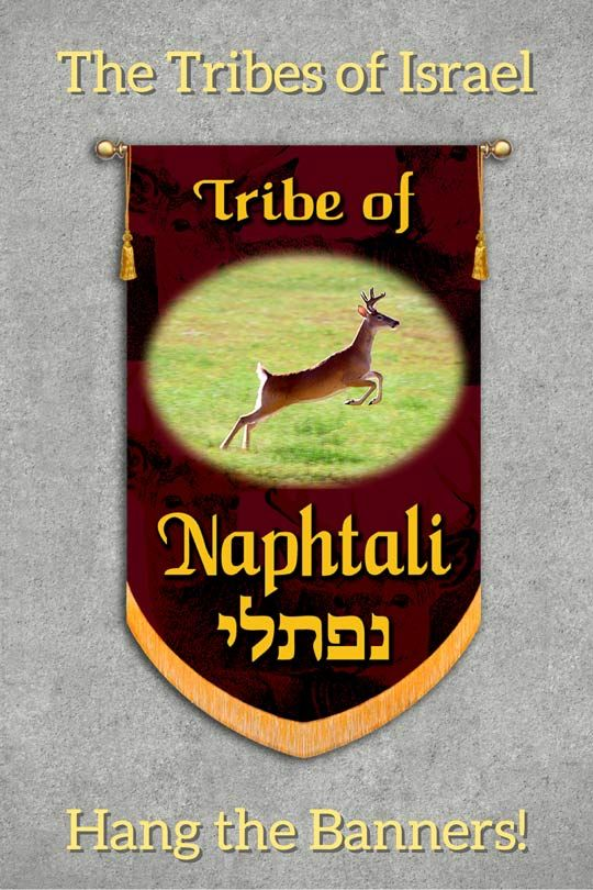 When Jacob Blessed His Twelve Sons He Said Naphtali Is A Doe