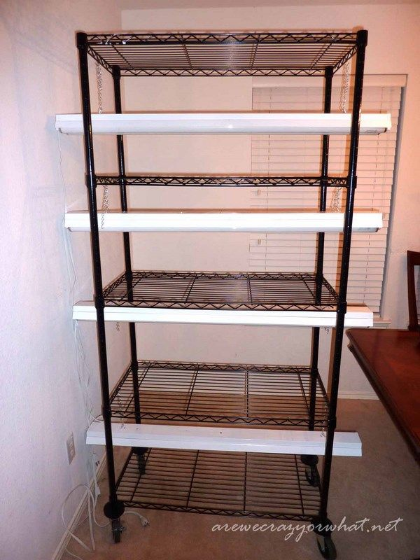 Building A Seed Growing Rack On The Cheap Indoor