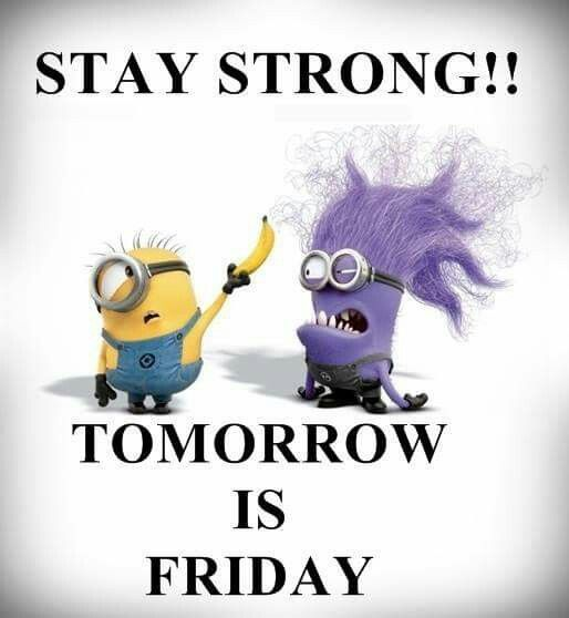 Tomorrow Is Friday Friday Quotes Funny Tomorrow Is Friday