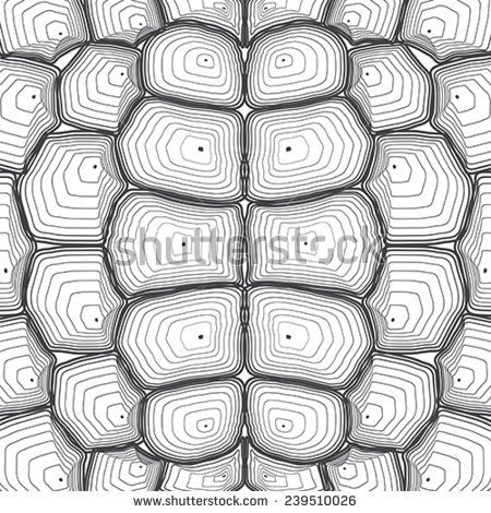 Turtle Shell Stock Images, Royalty-Free Images  Vectors ideas
