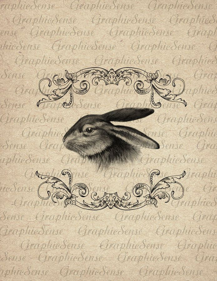 Easter Rabbit in Baroque Frame - Bunny - Hare - Printable Graphics