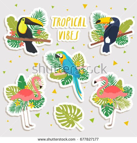 Set of cute cartoon illustrations of parrot flamingos and toucans with tropical leaves stickers