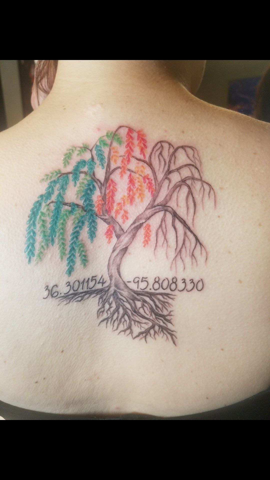 Weeping Willow Tree Tattoo Through All The Seasons This Is Home