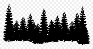 Drawing Tree Silhouette Evergreen Fore 1600901 Png Images Pngio Tree Silhouette Tree Drawing Forest Drawing