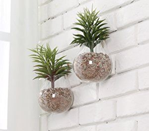 Clear Glass Wall Mounted Plant Terrariums Hanging Display Planter Vases Pots Decor Set Of 2 Hanging Vases Glass Planter Vertical Wall Planters