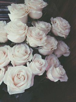image via we heart it dark flower flowers grunge rose roses