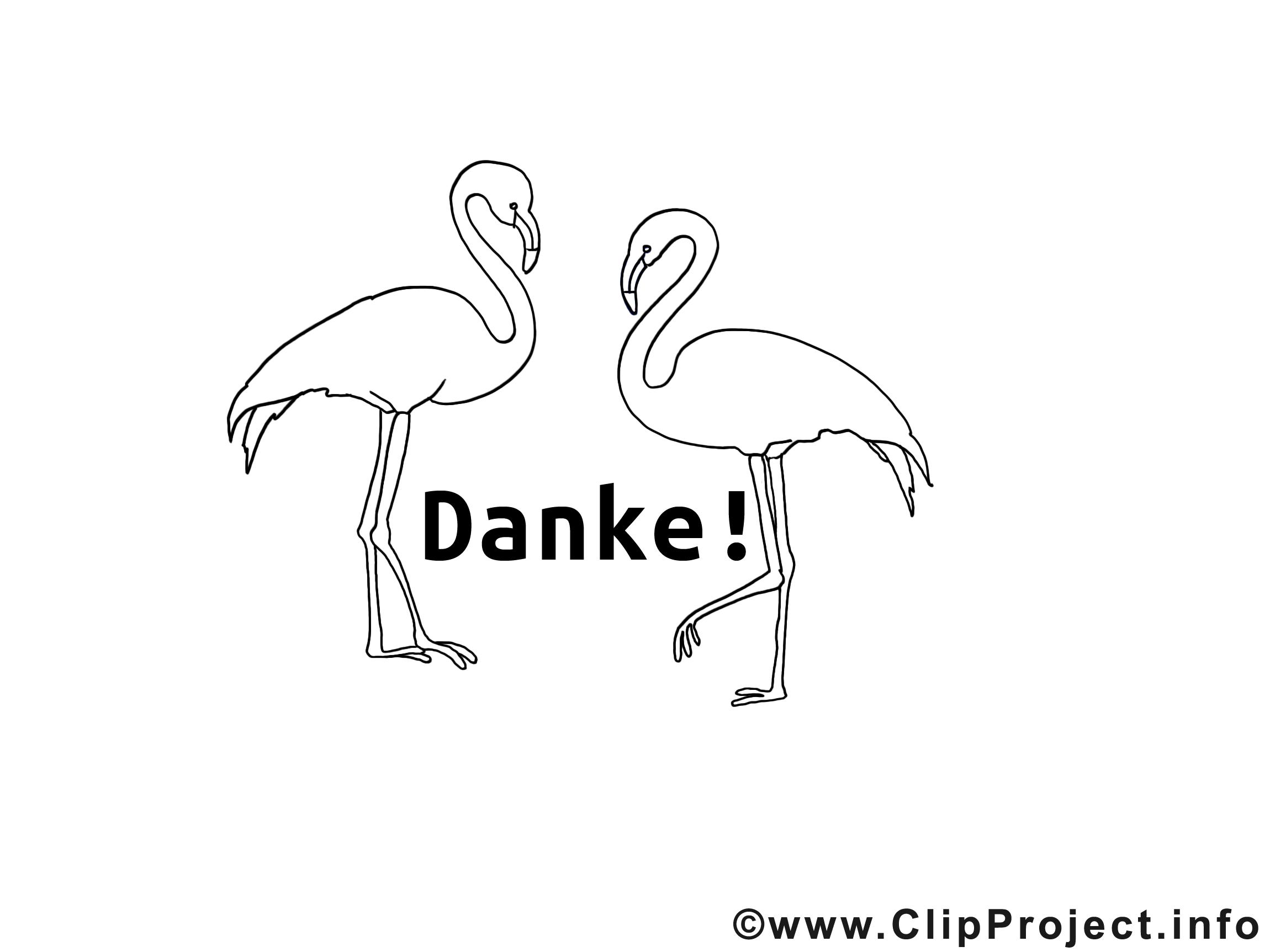 Kostenlose Malvorlage Tiere Flamingo Zum 14