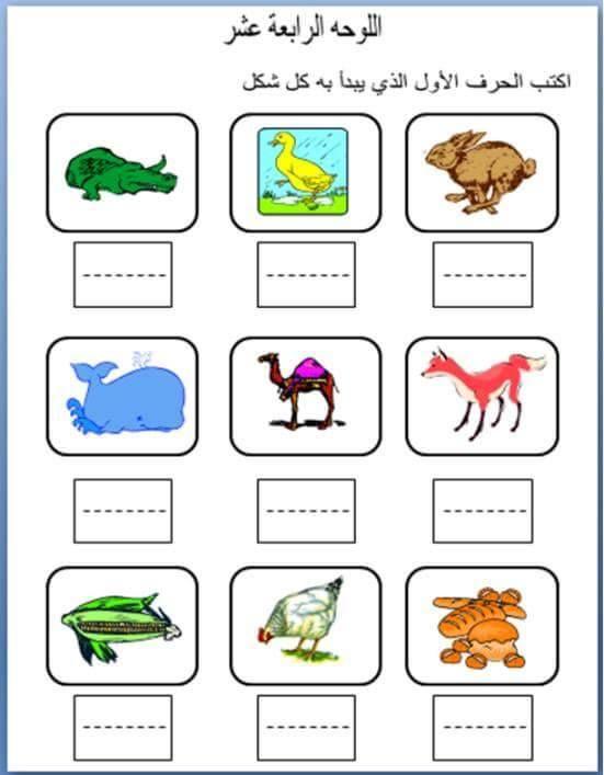 مرحلة رياض الأطفال الحضانة Kg1 Kg2 عربى لغات حساب أعداد كلمات صور تلوين شيتات Arabic Alphabet For Kids Arabic Alphabet Letters Arabic Kids