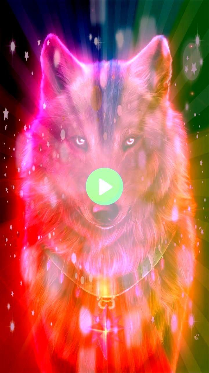 jetzt Red wolf Wallpaper von georgekev  1f  Free auf ZEDGE  Durchsuchen mi Downloaden Sie jetzt Red wolf Wallpaper von georgekev  1f  Free auf ZEDGE  Durchsuchen mil  Dow...