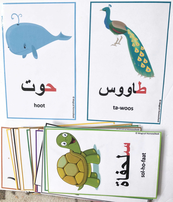 Arabic Gift العربية Animal Animal Crossing Art Toy Homemade Card Art Prints Print Rainbow Montessori Travel Puzzle Rainbow Art Print Custom In 2021 Flashcards Animal Alphabet Animals For Kids