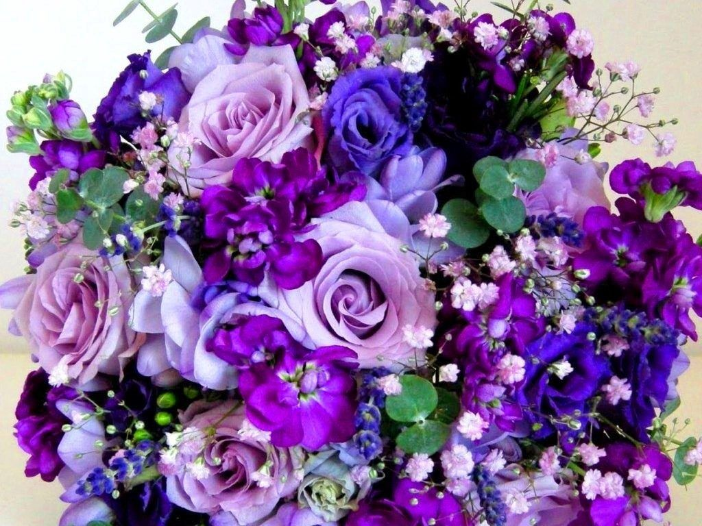 Ognature natural bouquet different beautiful nature purple ognature natural bouquet different beautiful nature purple flowers person shades special colors gift pink roses blue hd flower izmirmasajfo