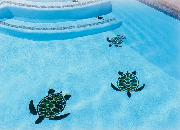 Turtle Mosaic Pool Makeover Mosaic Pool Pool Designs