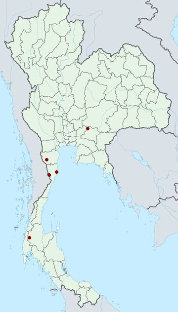 Distribution Map Of Little Grebe Tachybaptus Ruficollis In Thailand