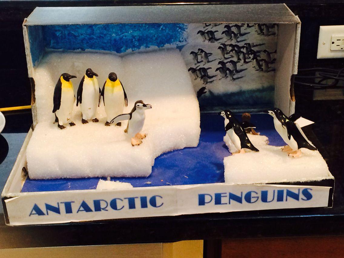 Kids Diorama With Details: Antarctica Diorama 2013