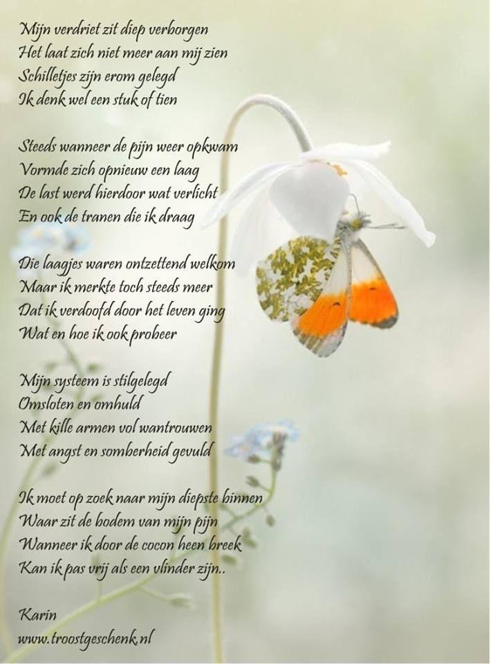Vrij Als Een Vlinder Gedichten Mooie Gedichten En Rouw