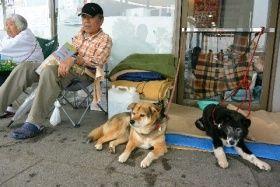 避難所の屋外で犬たちと過ごす津田秀雄さん 熊本県益城町の総合体育館 撮影 床波昌雄 ペット 犬 熊本