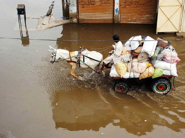 A donkey cart overloaded with various items passes through standing rainwater in Hyderabad. PHOTO: PPI