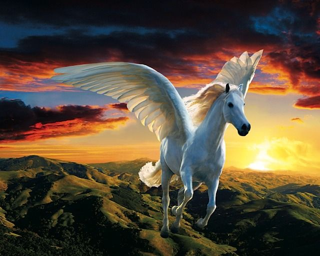 this is the flying white horse i pretended to be when i ...