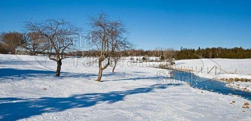 panoramic winter scenes  Canadian Winter Landscape