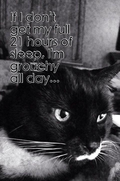 Need my sleep