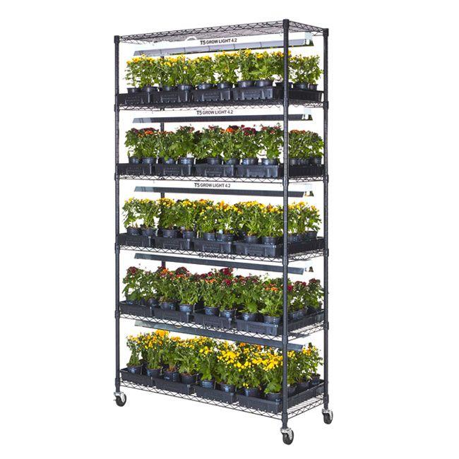 Plant Growing Stand Indoor Grow Lights Plants Wooden 400 x 300